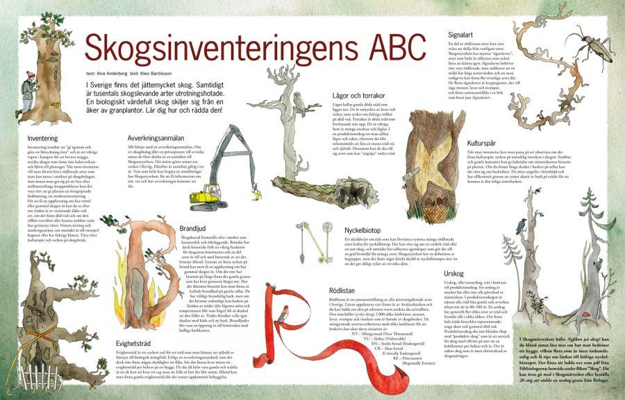 Mittuppslag i Fältbiologen 2011/2. Text: Alva Anderberg, Formgivning: Magnus Bjelkefelt, Illustration: Kleo Bartilsson