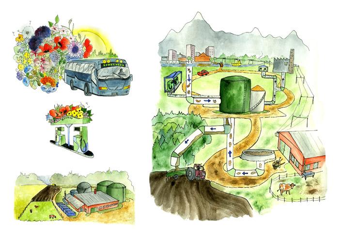 Urval av bilder publicerade i rapport om biogas. Uppdragsgivare: Biofuel Region